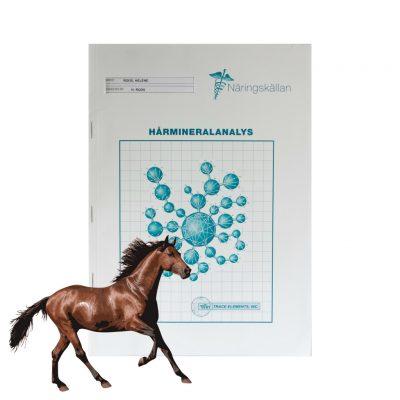 En hårmineralanalys ger din häst ett skräddarsytt kosttillskottsprogram