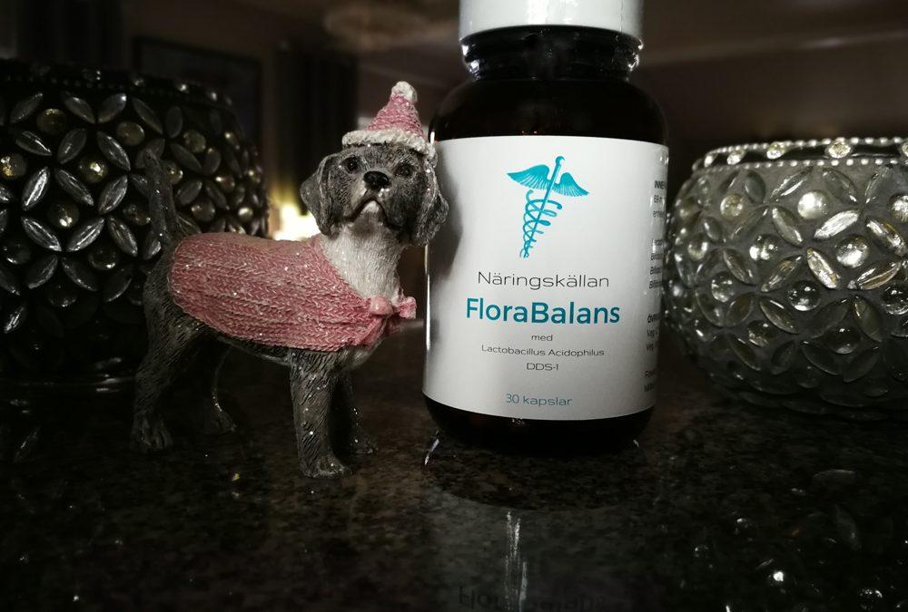 FloraBalans – Specialblandning för dig med magproblem